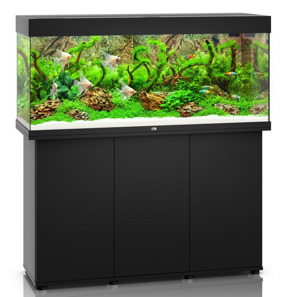 aquarium juwel rio 240