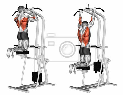 exercice traction