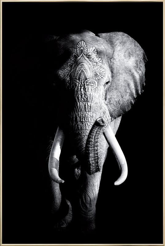 cadre elephant