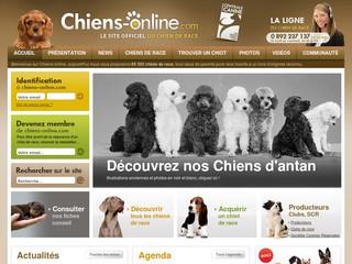 chien online