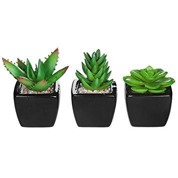 petite plante artificielle
