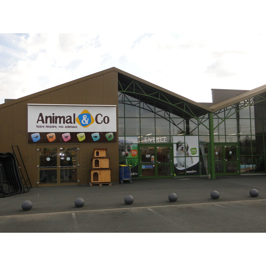 animaux magasin