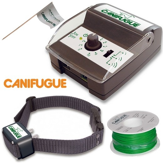 barriere anti fugue chien