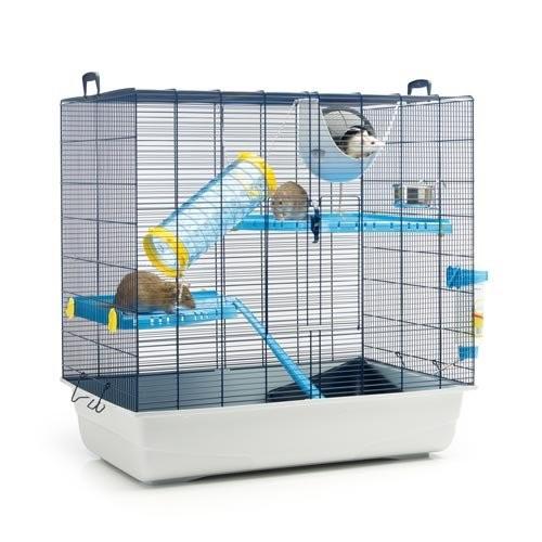 cage pour rat