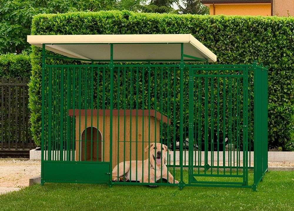 enclos chien extérieur