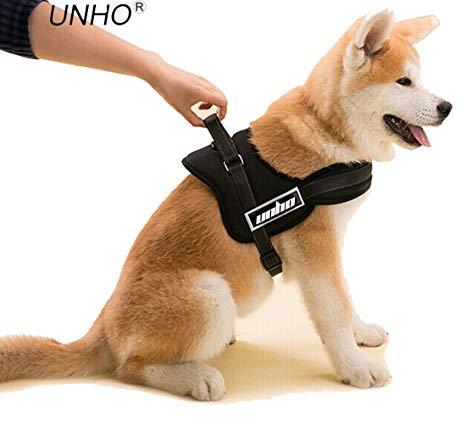 harnais petit chien