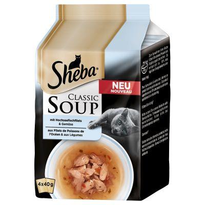 soupe pour chat