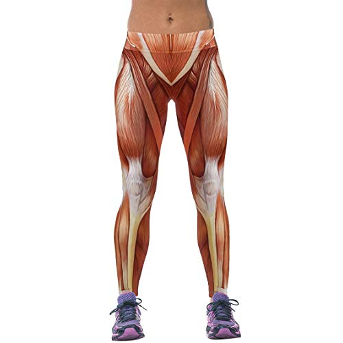 legging muscle