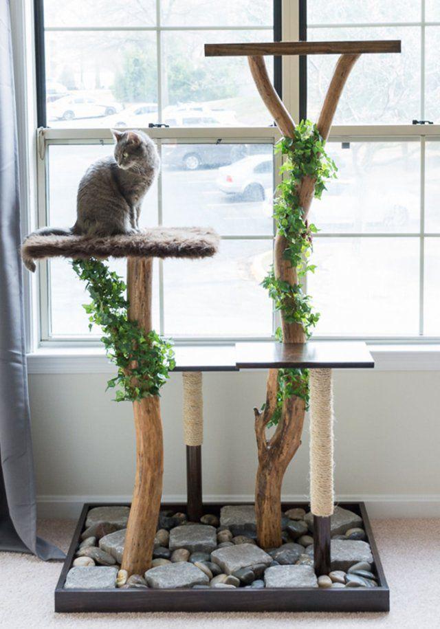 accessoires chat appartement