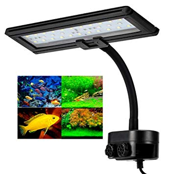 lampe aquarium led