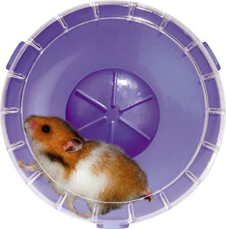 roue hamster silencieuse